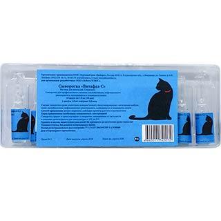 коронавирус у кошек лечение витафел