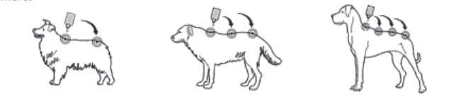 капли на холку для собак