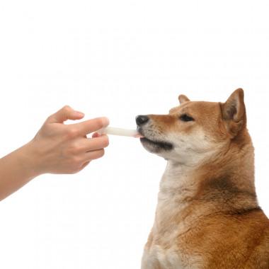 Прококс, для собак и щенков суспензия, фл. 20 мл #2